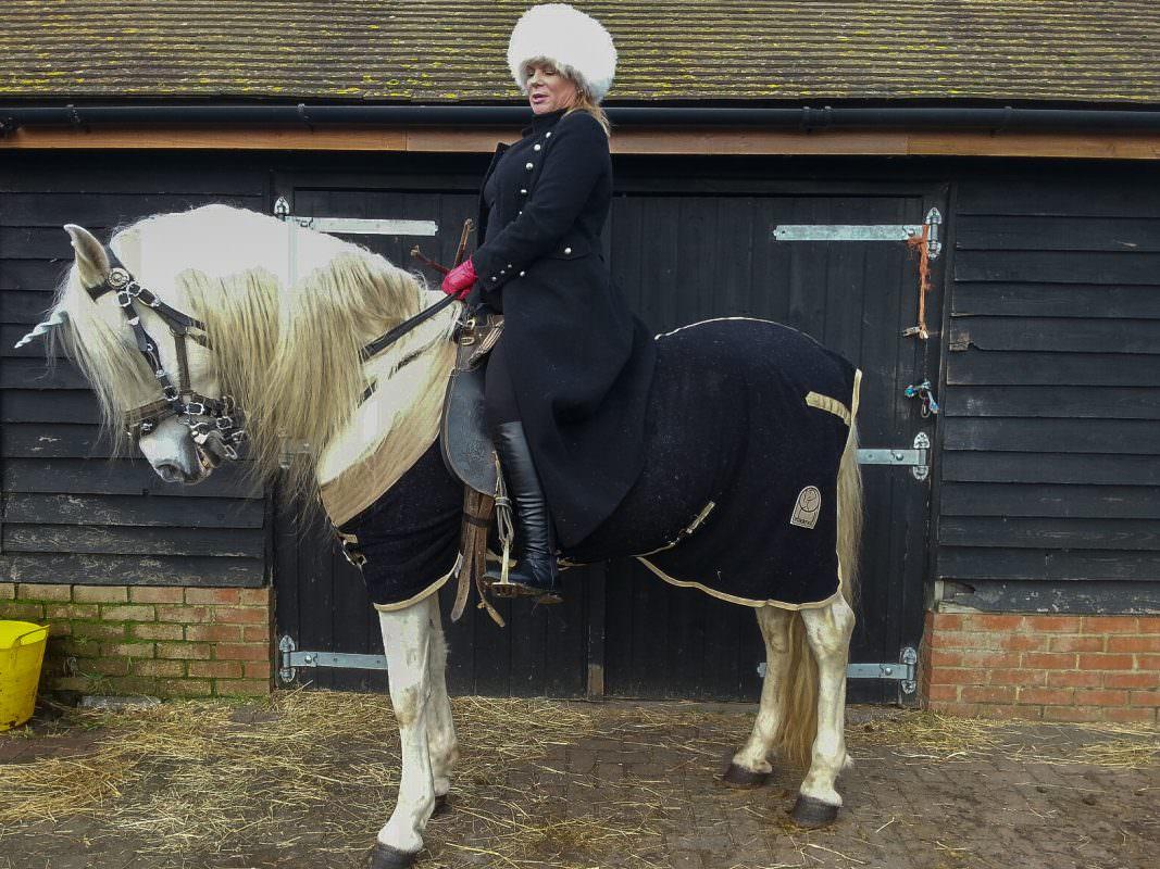 Rent White Horse 6