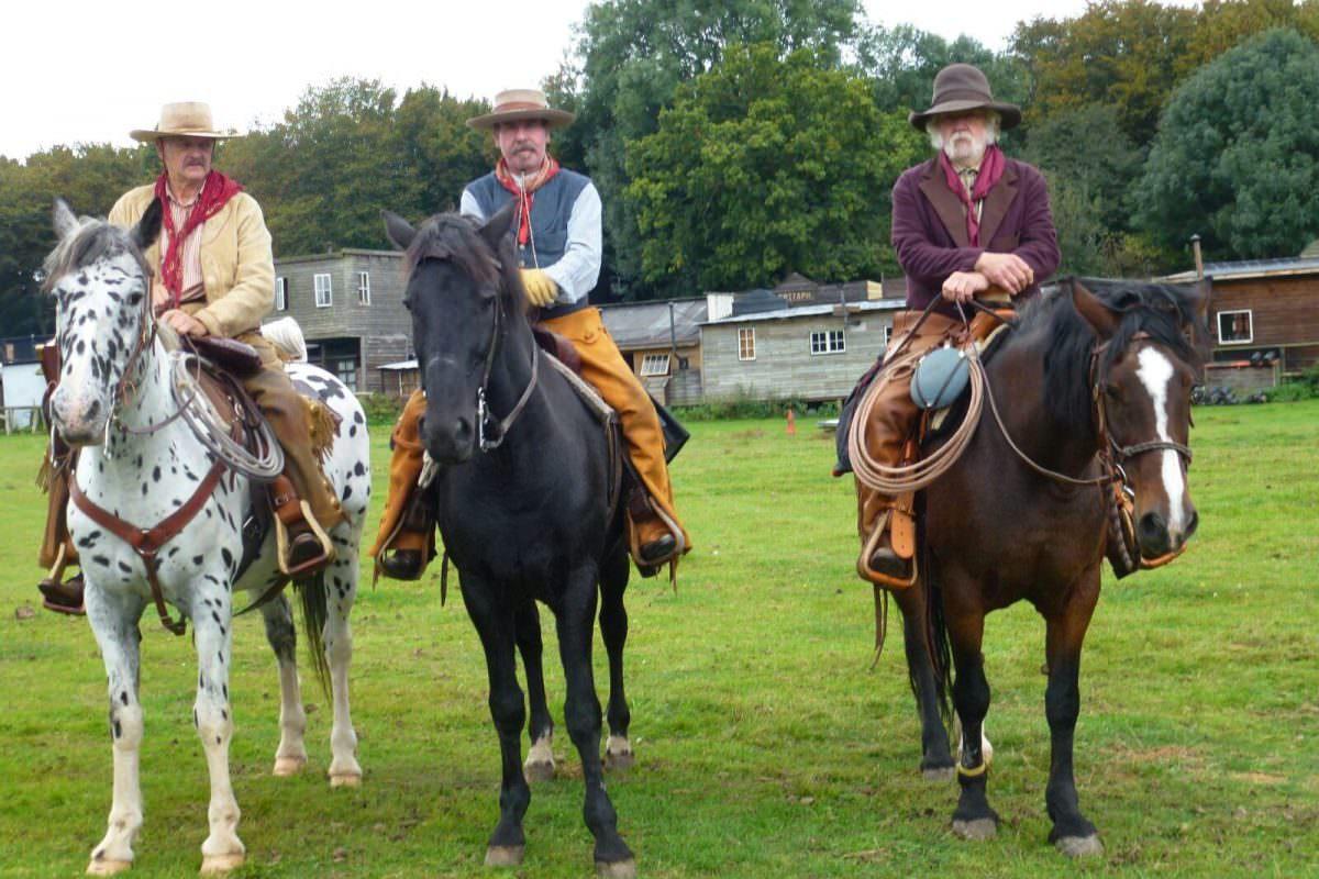 Rent Cowboy horses 2