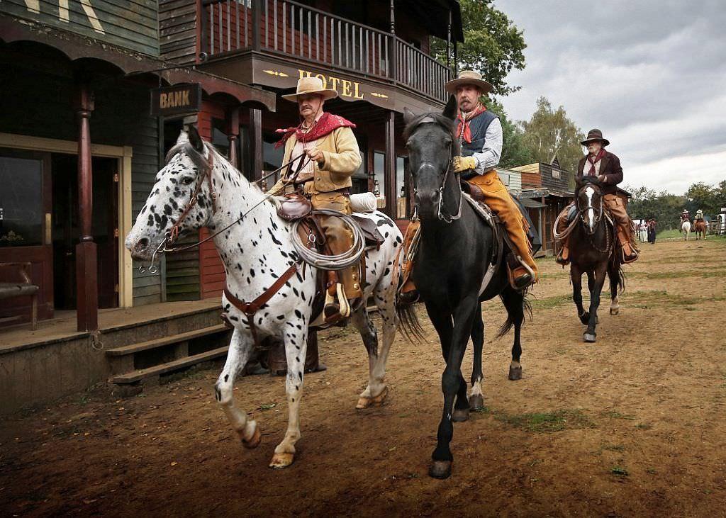Rent Cowboy horses 1