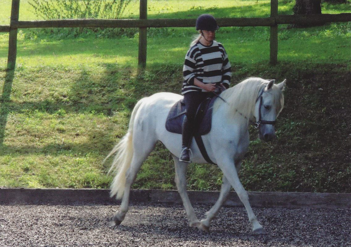 Rent White Horse Rita