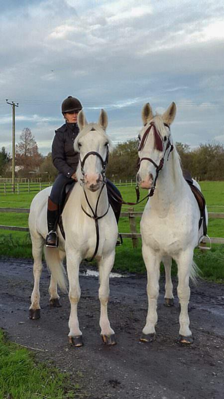 Rent White Horses 12