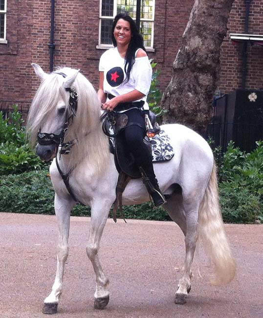 Rent White Horse 8